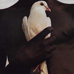 Vinyl: Santana's Greatest Hits