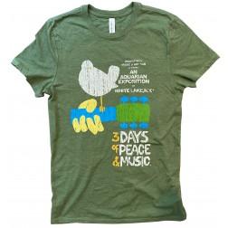 T-Shirt, distressed bird on guitar: Army Heather