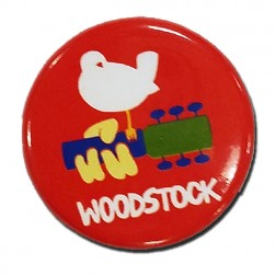 Bird on Guitar Button