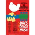 Woodstock Bird on Guitar Postcard