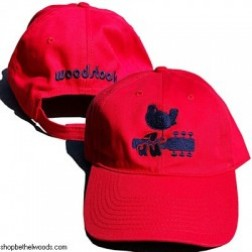 Woodstock Bird on Guitar Hat